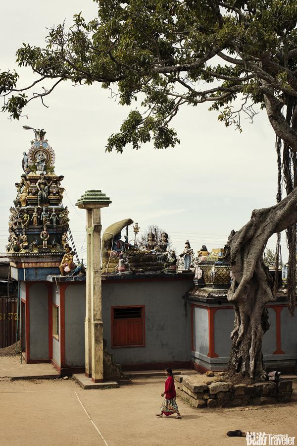 由阿努拉達普勒(Anuradhapura)、康提(Kandy)、波隆納魯瓦(Polonnaruwa)三座古城構成了斯里蘭卡內地...