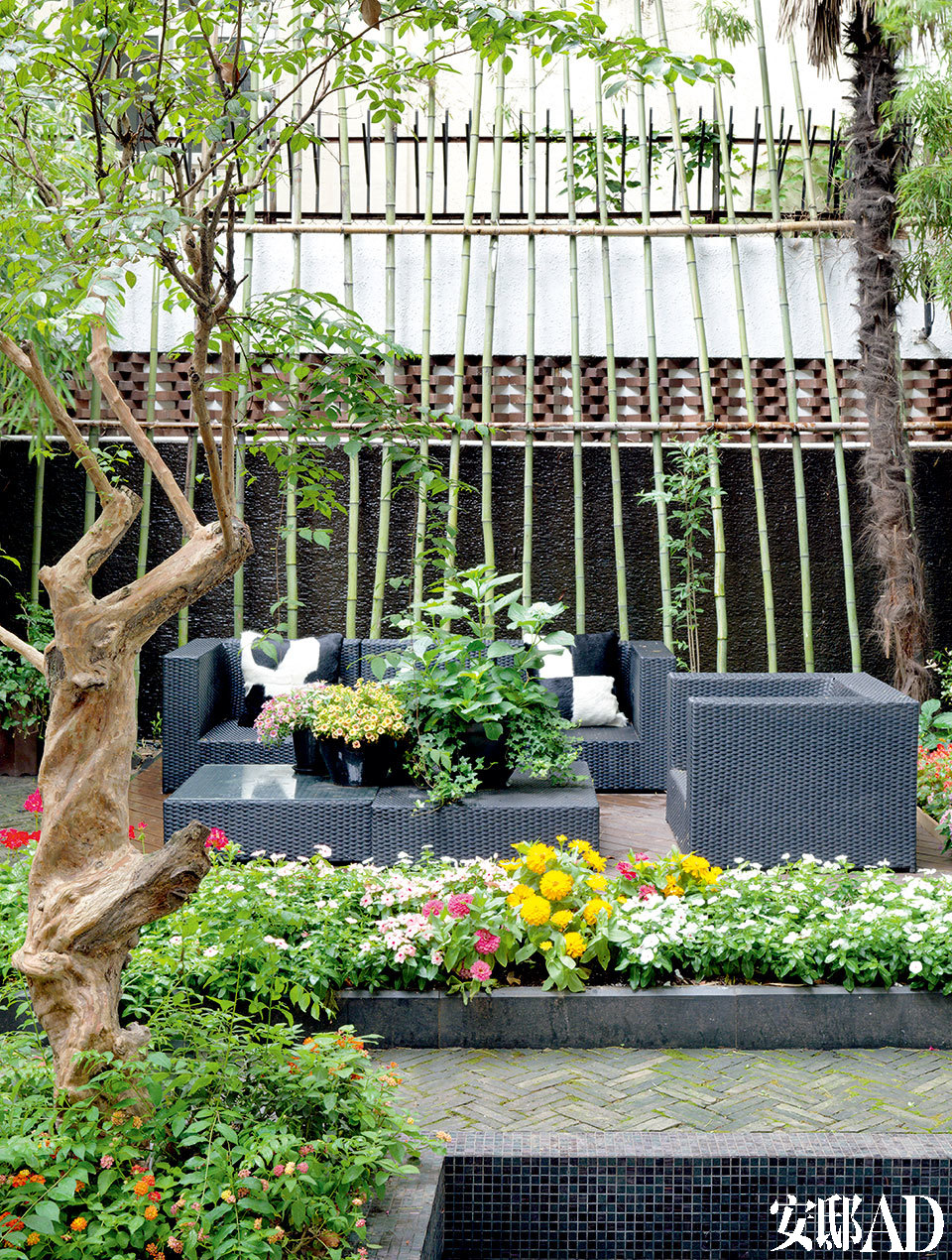 一层与客厅相连的花园。