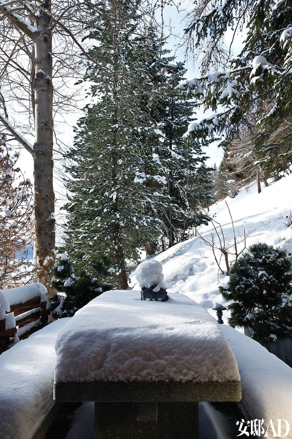 冬日里,从室内踱步室外, 如同穿越一片灰白梦境,也许下一秒就会有仙子从树林里冒出来。雪后初霁,白雪覆盖的山林尤其迷人。