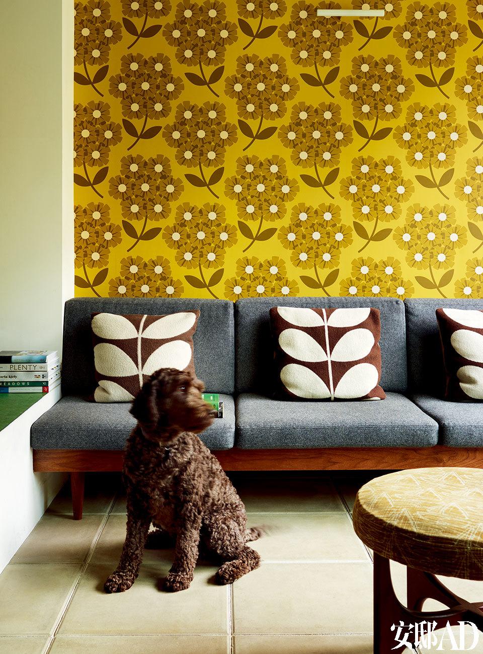 """在下层的休息室中,Orla的拉布拉多德利犬正""""坐望""""着窗外花园。Orla标志性的树枝图案被用在了靠垫上,杜鹃花图案的壁纸也来自她所设计的家居系列。"""