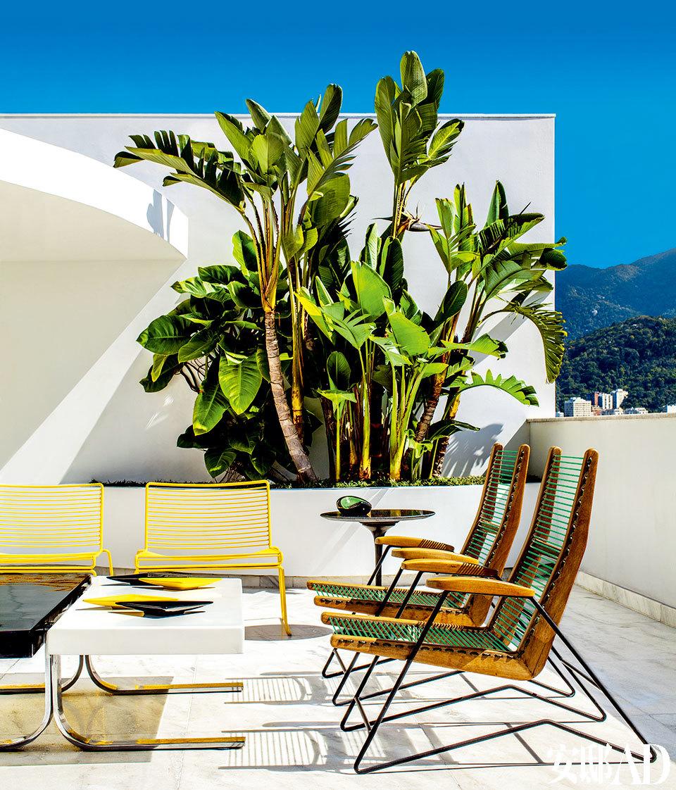 热带气息浓重的清新绿植主宰了这幢复式小楼,迎面扑来的满是上世纪60年代的风格和里约热内卢热烈的情感律动。