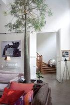 除了色调及风格抢眼的收藏品外,藕色沙发很好地安定了客厅的基调,也带来家的温馨感。