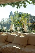 从起居室的窗户望出去,环绕整个公寓的大阳台花园中一片碧绿。黄澄澄的果实为室内纯白的圣诞装饰调入一丝暖意与生机。