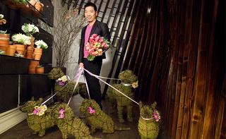 那些有趣的爱花人 Fab Florists
