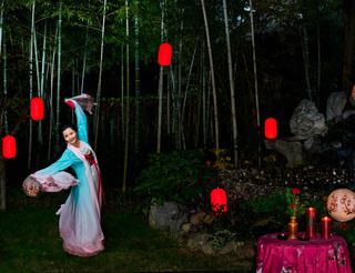 茶香花香戏曲香,传统文化浸润出何赛飞的团圆中国年