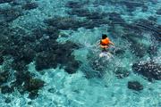 我來之前做的功課顯示,這里的最佳潛水時間是早上六點日出之時。我的清晨探險之旅就在Samantha和Krystal...