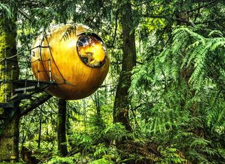 趣味树屋 带你走进童年梦境