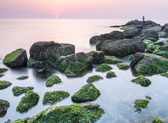 8月海鲜季,环渤海自驾正当时