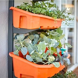 这件小玩意能把大自然搬进你的家里