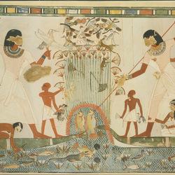 从埃及法老到摇摆的迪斯科 袜子到底经历了什么?