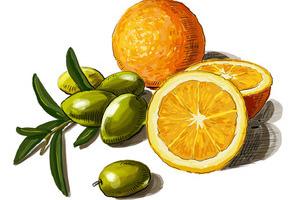 抗氧化物 重要的美容营养素