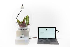 与植物对话?!科技改变未来世界