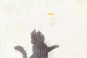 新海诚的动画电影究竟神奇在哪里