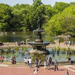 Ralph Lauren将于纽约中央公园庆祝品牌50...