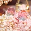 Jill Stuart眼鏡系列發布會首于上海舉行 以粉色詮釋獨有時尚態度