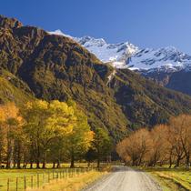 春赏秋色 走进新西兰金秋的童话