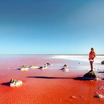 如梦似幻 乌克兰梦幻粉色盐湖美景令人窒息
