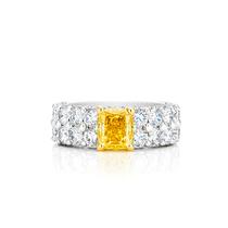 戴比尔斯钻石珠宝,1888大师美钻及钻石艺术珠宝