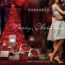 你才是最大的惊喜 roseonly 2015圣诞单品