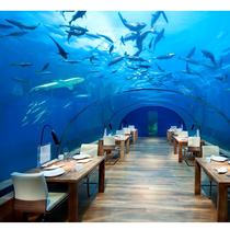 马尔代夫伦格里岛康莱德度假村 20 周年庆,马尔代夫奢华、设计与创新的前沿酒店,拥有全球首家海底餐厅-生活资讯