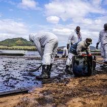 毛里求斯原油泄漏:你可以做些什么-时尚圈