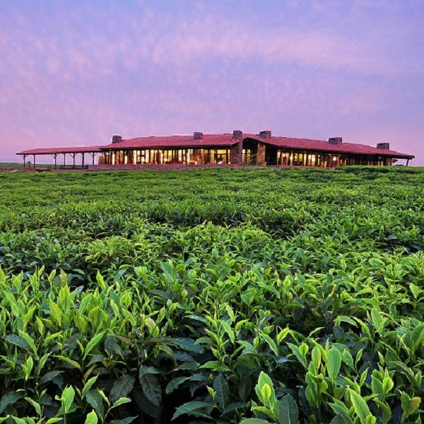 柯兹纳国际宣布ONE&ONLY唯逸度假酒店品牌进化计划
