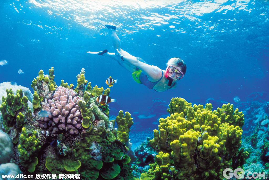 """澳大利亚是世界上最大的珊瑚礁群大堡礁的所在地,同时它还拥有纯朴的沙滩、海岸和全年都温暖的天气,因此它是全球最受欢迎的旅游目的地之一。今年年初,接近35万人申请了澳大利亚的六个""""全球最棒工作""""。"""