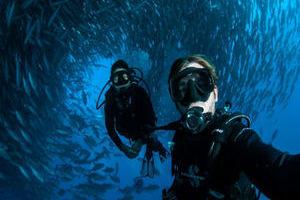澳夫妇墨西哥潜水 镜头记录鱼群盛景